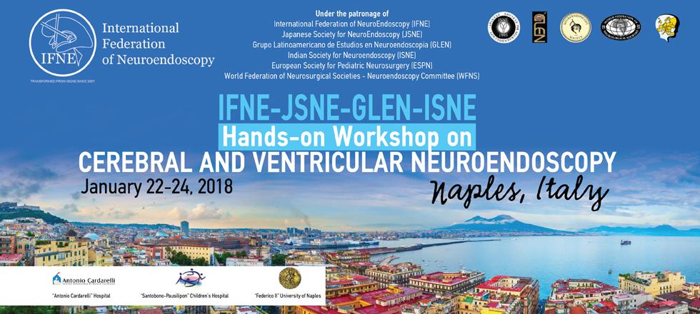 IFNE-JSNE-GLEN-ISNE Hand-on Workshop on CEREBRAL AND VENTRICULAR NEUROENDOSCOPY