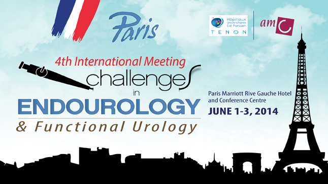 4th International Meeting challenges in endourology & Functional Urology