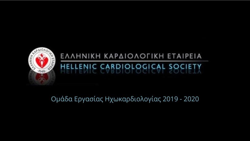 Workgroup Echocardiology HCS | 2019 - 2020