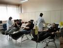 Αιμοδοσία 22.03.2011 (2)
