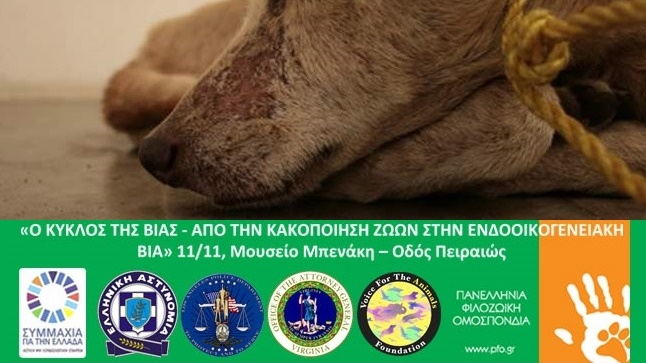 Congresses | Ο κύκλος της βίας - Από την κακοποίηση ζώων στην ενδοοικογενειακή βία