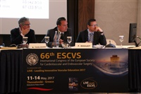 2nd DAY ESCVS 2017