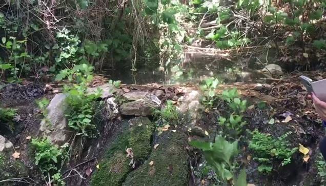 Οι πηγές της Ποταμιάς Νάξου: Όταν η φύση έχει κέφια!