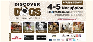 «Discover Dogs 2017»