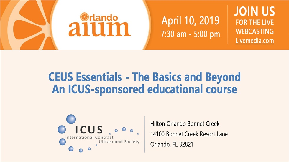 CEUS Essentials - The Basics and Beyond|An ICUS-sponsored educational...