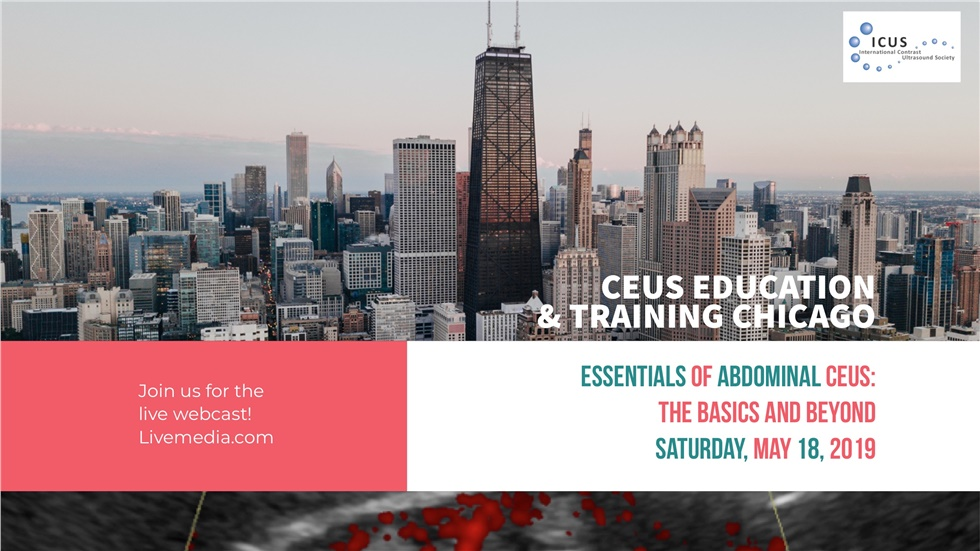 Courses | Essentials of Abdominal CEUS: The Basics and Beyond