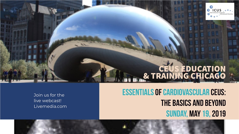 Courses | Essentials of Cardiovascular CEUS: The Basics and Beyond