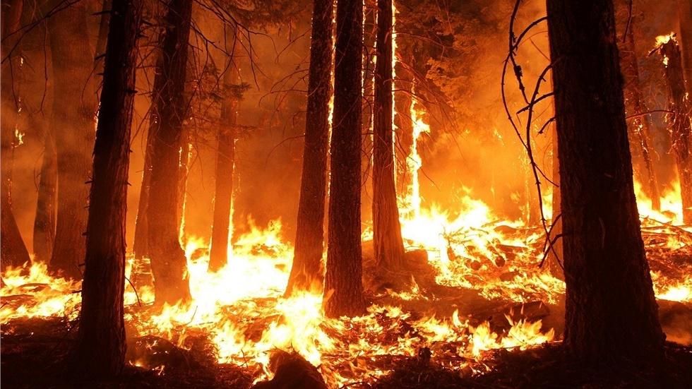 Αυστραλία: Ο καπνός από τις πυρκαγιές ευθύνεται για πολλές εκατοντάδες...