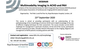 Multimodality Imaging in ACHD and PH