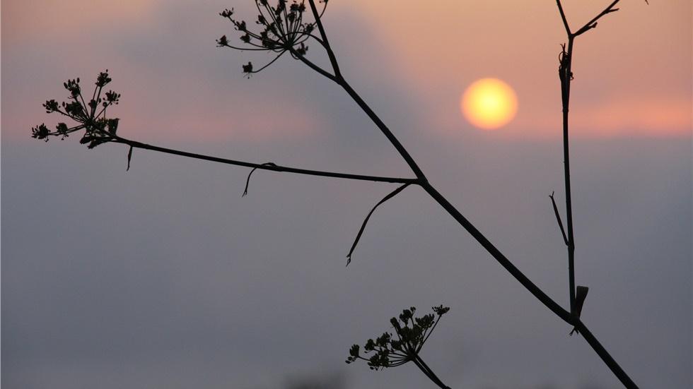 Ο φετινός και ο περσινός Ιούνιος ήταν οι πιο ζεστοί που έχουν...