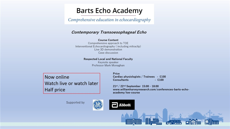 Contemporary Transoesophageal Echo in the era of routine 3D ...