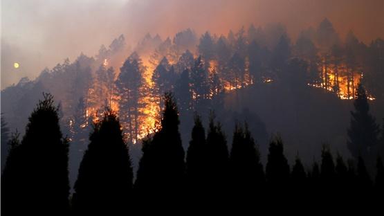 Καλιφόρνια: Μεγάλη πυρκαγιά στην κοιλάδα της Νάπα