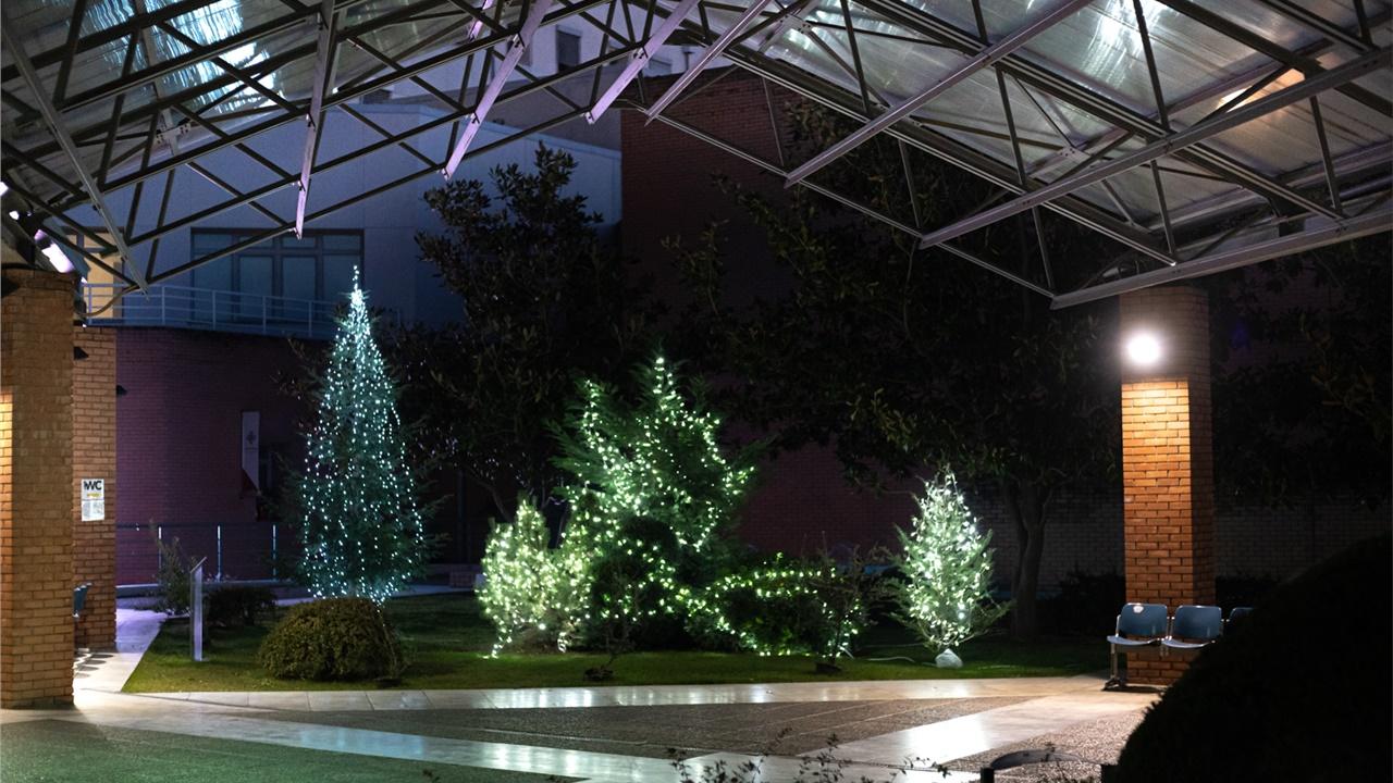 Θεσσαλονίκη: Έλατα και φωτεινά αστέρια από δωρεές κοσμούν το Παπαγεωργίου