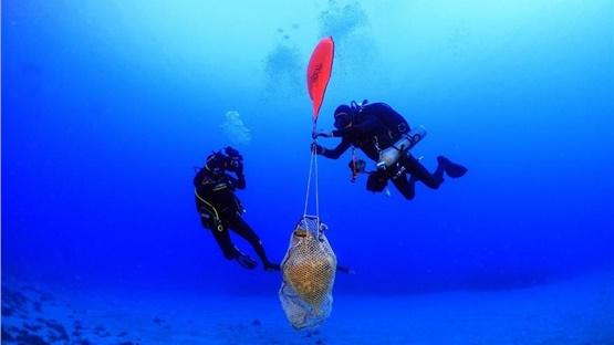 Κάσος: Εντυπωσιακές φωτογραφίες από υποβρήχια ερυνητική αποστολή