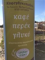 Το καφεγλυκοπωλείο του γυναικείου αγροτικού συνεταιρισμού Αγιού Αντωνίου.