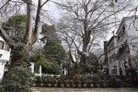 Η πλατεία της Πορταριάς