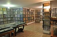 Άποψη από το μουσείο πεταλούδας