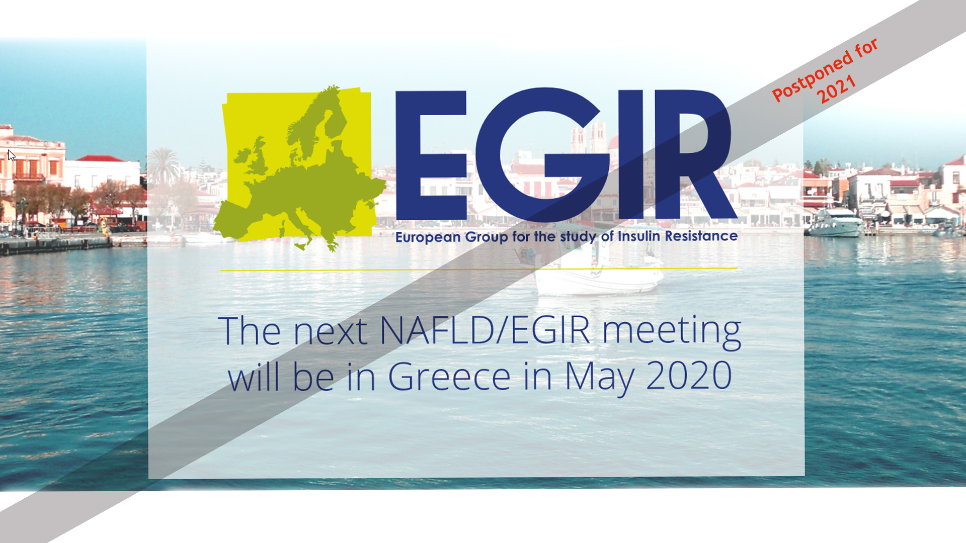 Joint Meeting of the EASD-NAFLD/EGIR Study groups