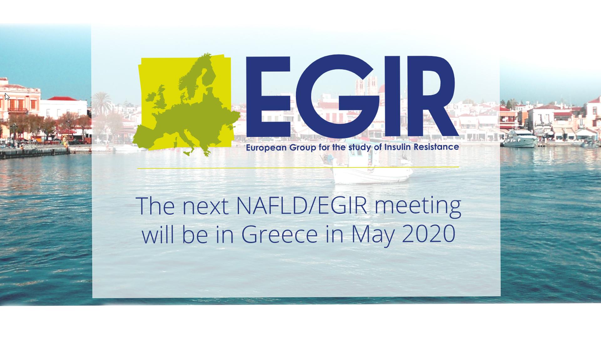 Joint Meeting of the EASD-NAFLD/EGIR Study groups