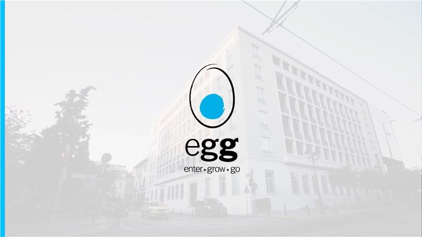 egg Companies Presentation